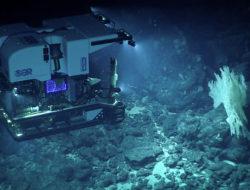 Deep Discoverer, ROV per l'esplorazione degli abissi